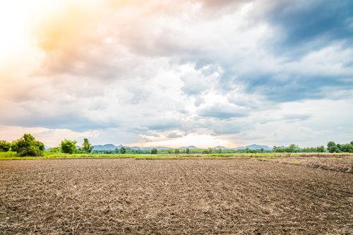 Зачем нужен межевой план земельного участка